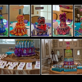 The Bat Mitzvah of Sara H